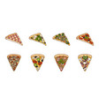 different pizza icons in set collection for design vector image