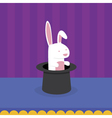 Rabbit in Magicians Hat vector image