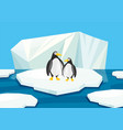 two penguins standing on ice vector image