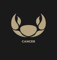 Cancer Horoscope Icon vector image