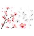 momo peach flower outline vector image