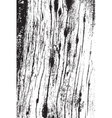Vertical Dry Wood Texture vector image