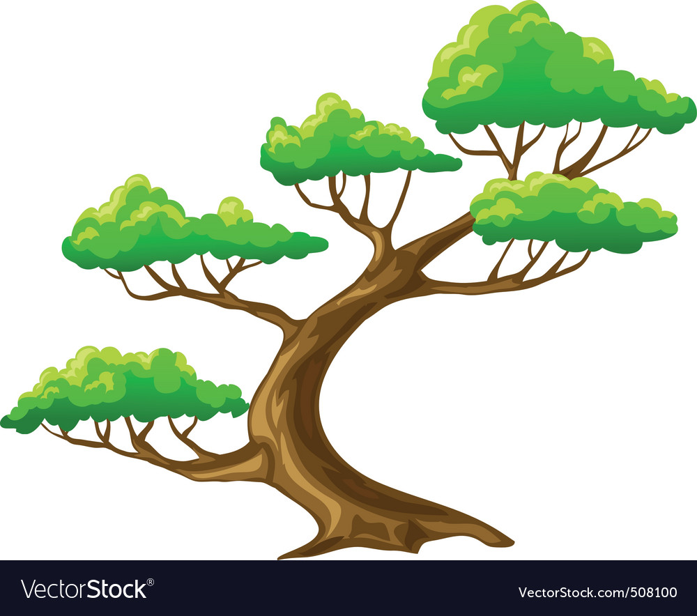Cartoon tree bansai with white background vector