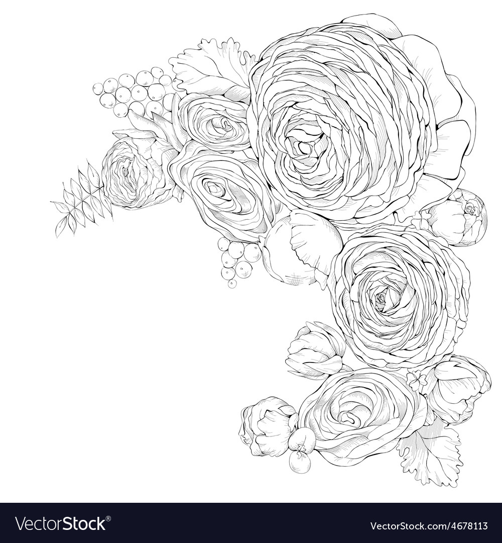 Greeting card with linear ranunculus flowers vector