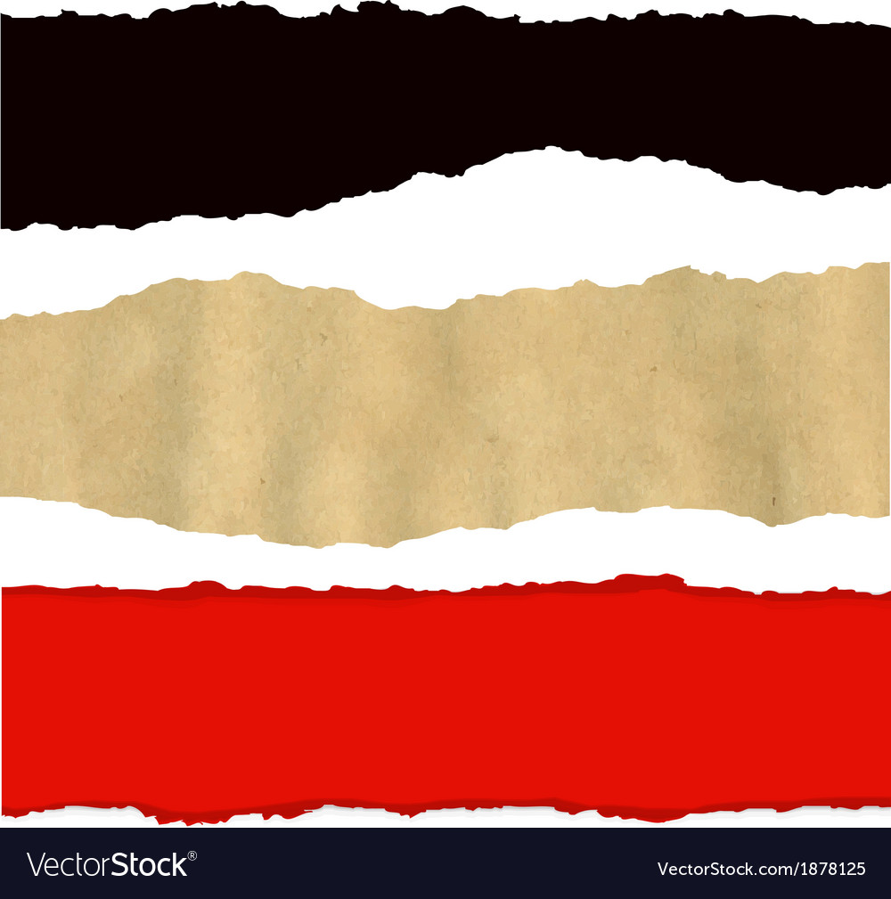 Collection of fragmentary paper vector