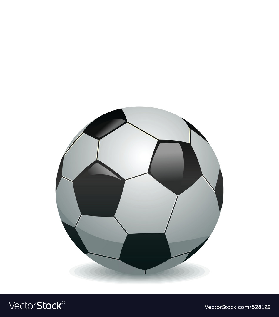 Of soccer ball vector