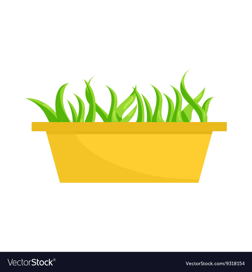 Young sprout seedlings in plastic flower box icon vector