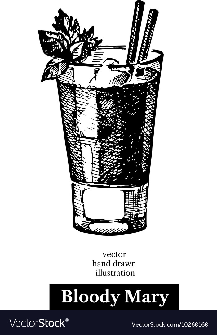 Hand drawn sketch cocktail bloody mary vintage vector
