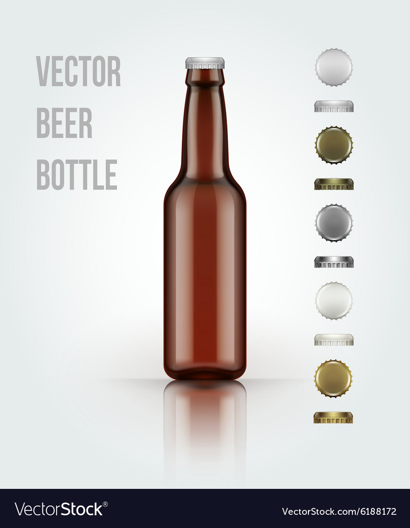 Blank glass beer bottle for new design vector