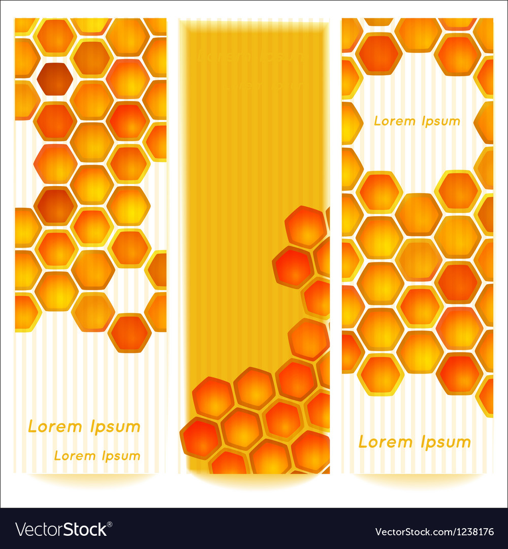 Vertical banners with honeycomb cells on vintage vector
