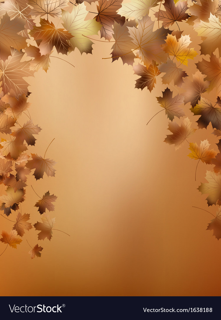 Background with maple autumn leaves eps 10 vector