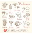 Set drawings of mushrooms for design menus vector image