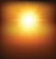 Hot sunny background vector image vector image