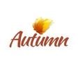 Autumn Logo Template vector image