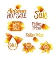 Autumn Sales Theme vector image
