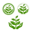 Natural product icon with hands and plant vector image