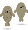 Two gray seals sea Fur in spots vector image