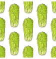 Seamless pattern of Chinese lettuce vector image