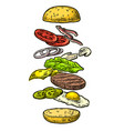 burger ingredients on white background vector image vector image