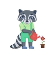 Boy Raccoon Watering The Flower vector image