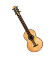 brazilian guitar music typical instrument image vector image