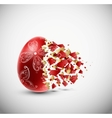 Broken egg vector image vector image