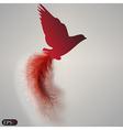 bird of paradise vector image