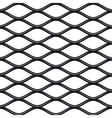 Texture black and white expanded metal sheet mesh vector image