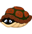 Cute turtle hides in its shell vector image