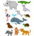 Cartoon wild animals vector image