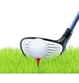 golf club and ball on grass vector image