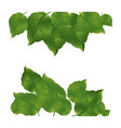 green leaves background icon vector image