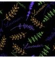 Lavender Seamless pattern vector image