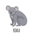 cute koala in flat style vector image