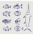 Hand drawn sketch fish vector image
