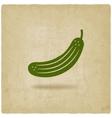cucumber symbol vector image