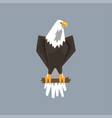 north american bald eagle character sitting on a vector image