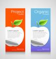 Brochure design apple concept vector image
