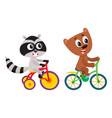 cute little raccoon and bear characters riding vector image