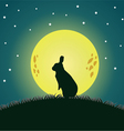 moon and cony vector image