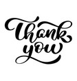 text thank you hand written calligraphy lettering vector image
