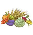 Doodle harvesting vegetables vector image
