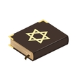 Jew bible book vector image