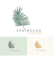 palm coconut tress logo for resort hotel vector image