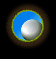 Golf Ball Hole vector image vector image