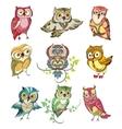Colorful Birds Set vector image