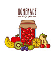homemade jam design vector image