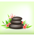 Spa stones and tropical flowers vector image