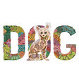 word dog with a figure of a dog decorative vector image