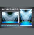 Set Backgrounds of gymnastics arena and stadium vector image